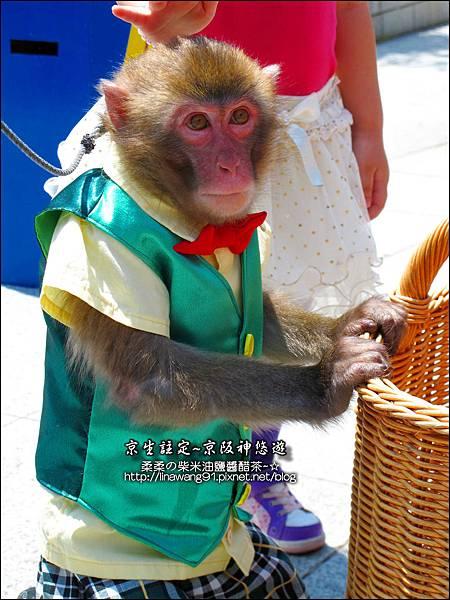 2014-0502-日本-神戶-北野町異人館-風見雞館 (4).jpg