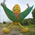 2014-1228-嘉義-義竹-玉米迷宮.jpg