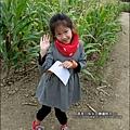 2014-1228-嘉義-義竹-玉米迷宮 (6).jpg