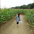 2014-1228-嘉義-義竹-玉米迷宮 (7).jpg