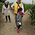 2014-1228-嘉義-義竹-玉米迷宮 (9).jpg