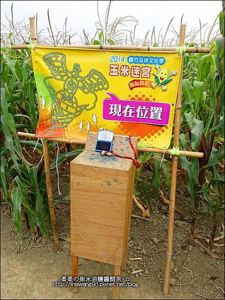 2014-1228-嘉義-義竹-玉米迷宮 (14).jpg