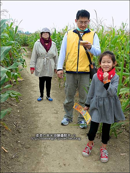2014-1228-嘉義-義竹-玉米迷宮 (20).jpg