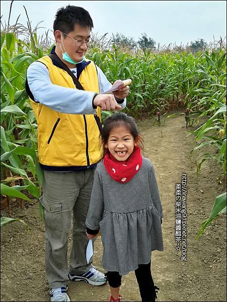 2014-1228-嘉義-義竹-玉米迷宮 (22).jpg