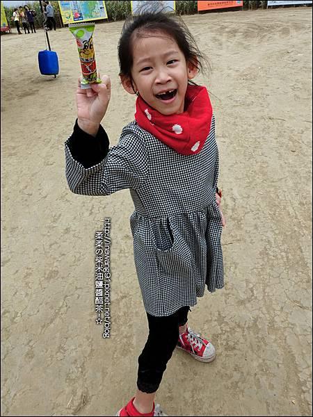2014-1228-嘉義-義竹-玉米迷宮 (32).jpg