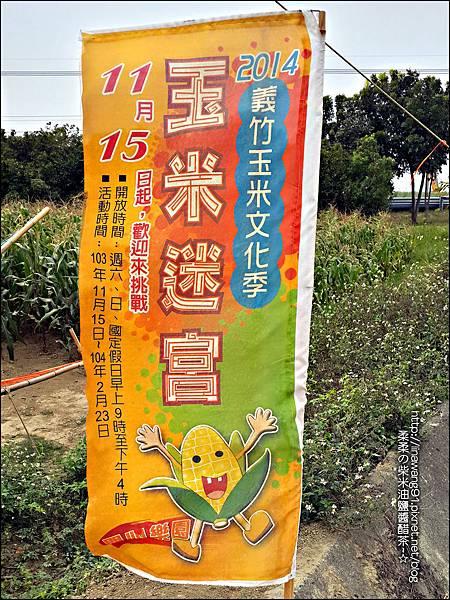 2014-1228-嘉義-義竹-玉米迷宮 (35).jpg