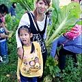 2014-1122-南埔芥菜節 (14)