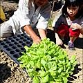 2014-1122-南埔芥菜節 (22)