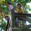 2014-1122-南埔芥菜節 (32)