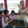 2014-1122-南埔芥菜節 (51)