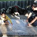 2014-1122-南埔芥菜節 (65)