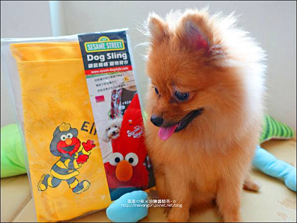 2015-0925-Ayumi 美國麻街限定款袋鼠媽媽袋-消防英雄.jpg