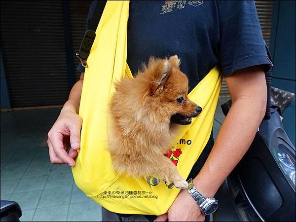 2015-0925-Ayumi 美國麻街限定款袋鼠媽媽袋-消防英雄 (15).jpg