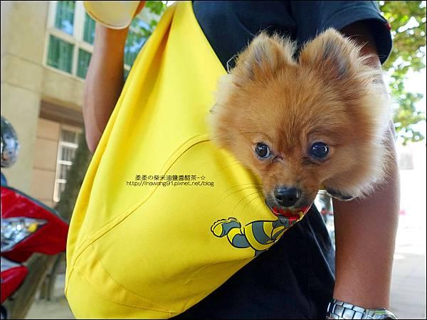 2015-0925-Ayumi 美國麻街限定款袋鼠媽媽袋-消防英雄 (19).jpg