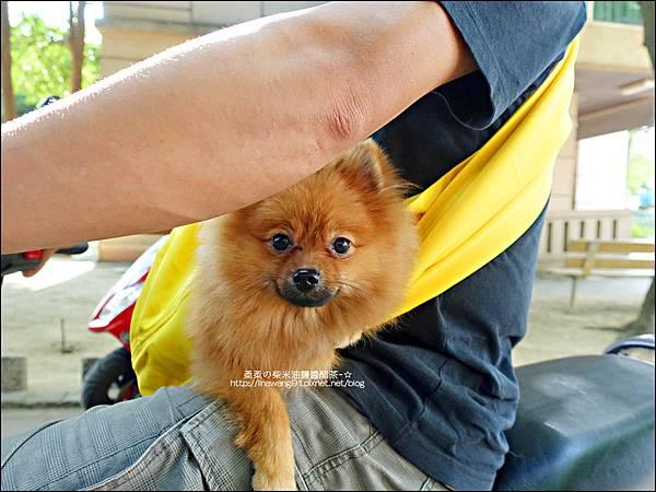 2015-0925-Ayumi 美國麻街限定款袋鼠媽媽袋-消防英雄 (18).jpg