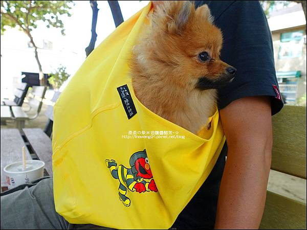 2015-0925-Ayumi 美國麻街限定款袋鼠媽媽袋-消防英雄 (23).jpg