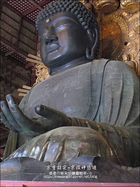 2014-0503-日本-大阪-東大寺 (11).jpg