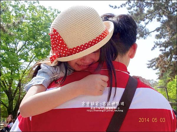 2014-0503-日本-大阪-奈良公園 (22).jpg