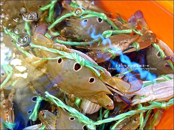 2015-1031-台北-萬里-龜吼漁港 (9).jpg
