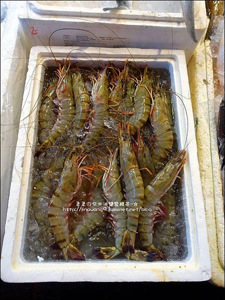 2015-1031-台北-萬里-龜吼漁港 (12).jpg