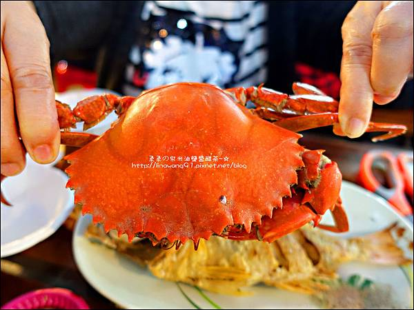 2015-1031-台北-萬里-龜吼漁港 (18).jpg