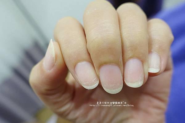 2016-0224-迪卡蜜洛藝術美甲沙龍館 (32).jpg