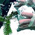 2016-0124-橫山-大山背雪景 (38).jpg