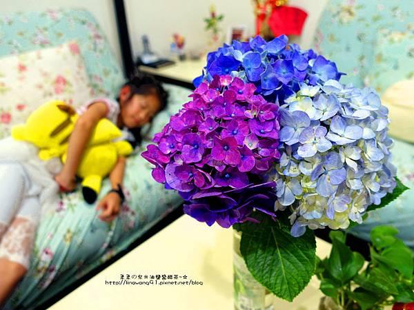 2017-0530-財福海芋田 (35).jpg