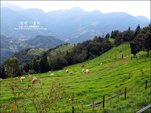 2010-0920-南投清境 (11).jpg