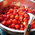 2011-0226-灣潭玫瑰草莓園 (25).jpg