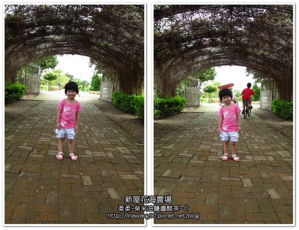 2010-0620-新屋花海農場 (26).jpg