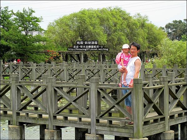 2010-0620-新屋蓮園 (20).jpg