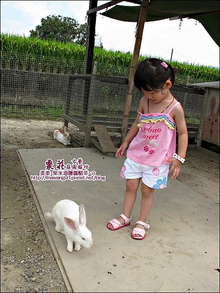 苗栗-公館-棗莊-2010-0702 (31).jpg