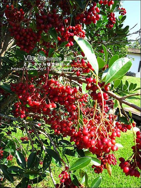 2010-0531-vilavilla山居印象農莊 (38).jpg