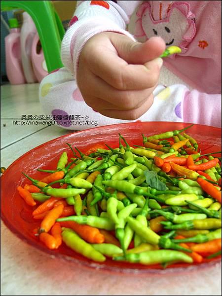 2010-1103-Yuki 2Y10M幫忙拔小椒椒 (6).jpg