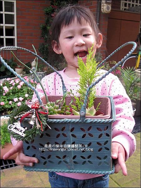 2011-0314-仙人掌組合盆栽 (10).jpg