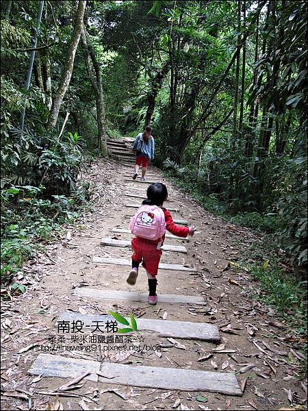 2010-0608-南投-天梯 (3).jpg