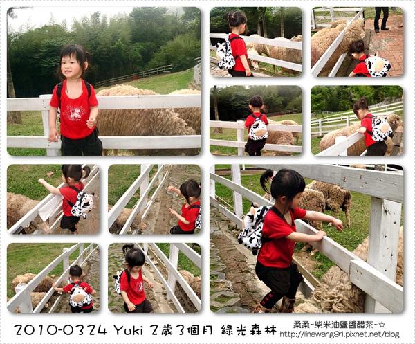 2010-0324-桃園-綠光森林 (64).jpg