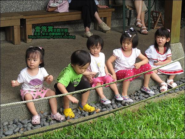 2010-0806-壹等賞景觀茶園 (25).jpg