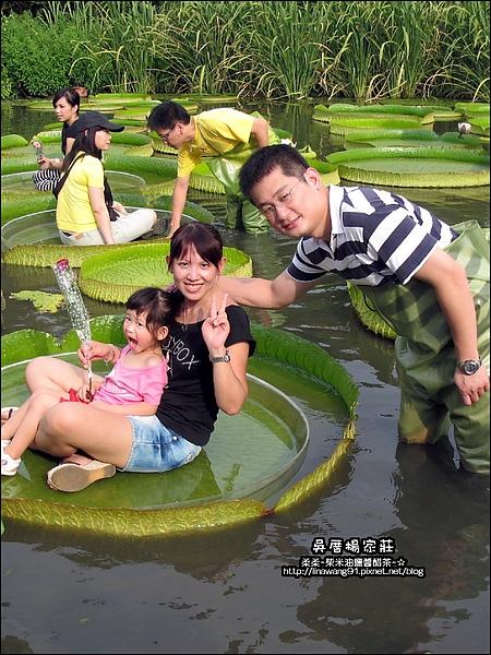 吳厝楊家莊-2010-0815 (17).jpg