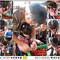 2011-0226-灣潭玫瑰草莓園 (60).jpg