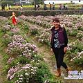2010-1114-2010-銅鑼-杭菊芋頭節 (21).jpg