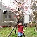 2011-0223-新竹公園-賞櫻花 (4).jpg