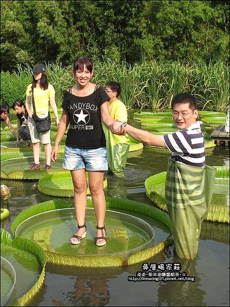 吳厝楊家莊-2010-0815 (24).jpg