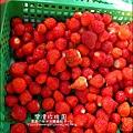 2011-0226-灣潭玫瑰草莓園 (23).jpg