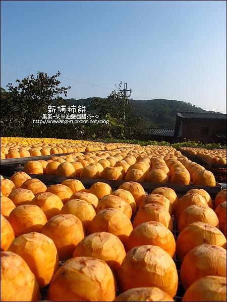 2010-1026~1102-新埔-金漢柿餅 (20).jpg