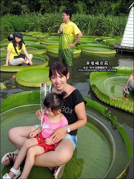 吳厝楊家莊-2010-0815 (21).jpg