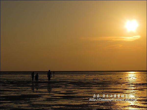 2010-0531-香山濕地-夕陽照 (10).jpg