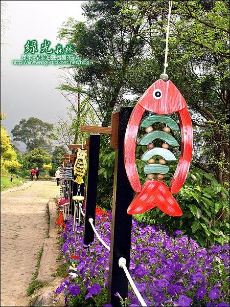 2010-0324-桃園-綠光森林 (5).jpg