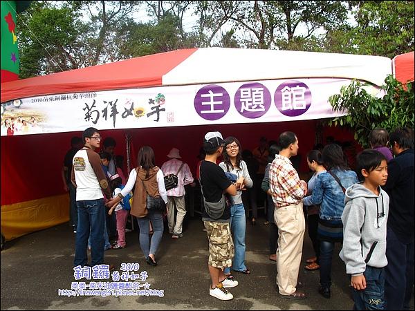 2010-1114-2010-銅鑼-杭菊芋頭節 (31).jpg